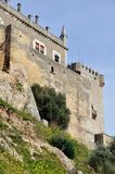 Castle of Almodovar del Rio, Andalusia, Spain Royalty Free Stock Images