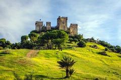 Castle of Almodovar del Rio. View of the Castle Almodovar del Rio on the top of the hill,  near Cordoba, Cordoba Province, Andalusia, Spain Stock Image
