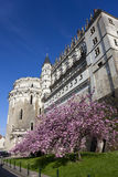 Castle of Amboise Royalty Free Stock Photography