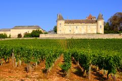 Castle amongst the vineyards of Burgundy, France Royalty Free Stock Images