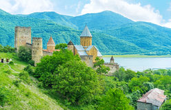 The Castle at the Aragvi River Stock Image
