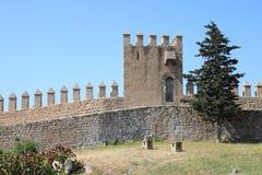 Castle battlements Royalty Free Stock Photo