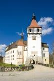 Castle Blatna royalty free stock photos