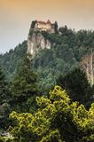 Castle of Bled, Slovenia Royalty Free Stock Photo