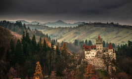 Castle bran. Bran castle romania tree mountain Stock Photo
