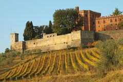 Castle of Brolio stock image