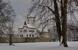 Castle Budatin το χειμώνα, Σλοβακία Στοκ Φωτογραφία