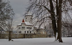 Castle Budatin in winter, Slovakia Stock Photography