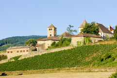 Castle in Burgundy. Chateau de Pierreclos, Burgundy, France Stock Photos