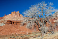 The Castle of Capitol Reef stock photo