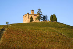 Castle of Cavour Royalty Free Stock Image