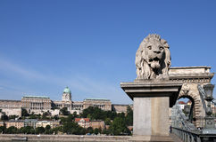 Castle and chain bridge lion statue Budapest Stock Photos