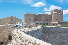 Castle Chateau d'If, near Marseille France. Stock Photos