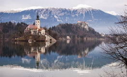 Castle and church under the Alps. The view from the shore of the lake Bled. In the middle of the lake you can see the church on the island. In the back on the Royalty Free Stock Photography