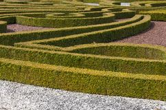 Hedge Garden. Manor hedge garden, with gravel, located in Germany stock photography