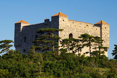 Castle. Croatia Stock Image