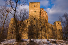 The castle in Drzewica, Poland Royalty Free Stock Photos