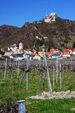 Castle of Durnstein with vineyard Austria, Europe. Ruins of the castle of Durnstein with a vineyard in the foreground in Lower-Austria, Austria, Europe Stock Photos
