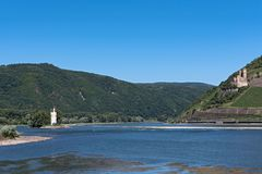 Castle Ehrenfels and the Binger Mouse Tower in the Middle Rhine royalty free stock images