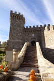 Castle Entrance. The entrance to a stone castle with pumpkins Royalty Free Stock Photos