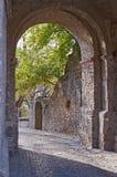 Castle entrance gate Stock Images