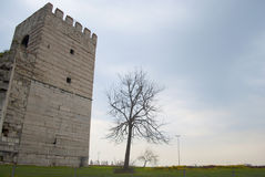 Byzantin Fortress wall in Istanbul Royalty Free Stock Photos