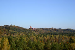 Castle far away among the trees Royalty Free Stock Photo