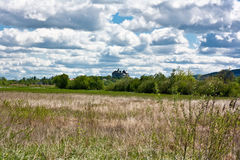 Castle in the field. White castle in the field against blye sky royalty free stock photos