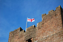 Castle flag Royalty Free Stock Photos
