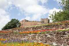 Castle flowers Stock Images