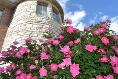 Castle. And flowers clouds and sky Royalty Free Stock Images
