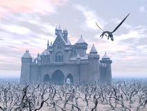Castle and Flying Dragon Stock Photo