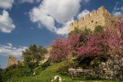 Castle garden Royalty Free Stock Photos