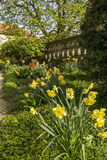 Castle Garden. Full of flowers and blossoms Royalty Free Stock Photo