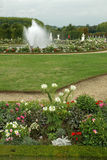 The castle gardens of Versailles. Beautiful floral decoration in the castle gardens at Versailles, France Stock Photography