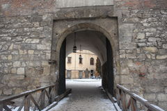 Castle gates in Lvov Stock Images