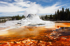 Castle Geyser. Steam coming from Castle Geyser (Upper Geyser Basin) - Yellowstone National Park Stock Image