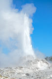 Castle Geyser erupting Stock Photography