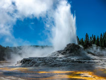 Castle Geyser Eruption Yellowstone. Castle Geyser erupts with hot water and steam with pools of thermophilic bacteria and is a cone geyser in the Upper Geyser Royalty Free Stock Photo