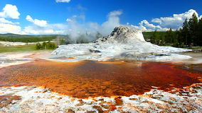 Castle Geyser of Yellowstone stock footage