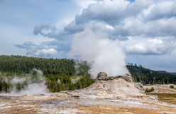 Castle Geyser. At Yellowstone National Park Royalty Free Stock Photos