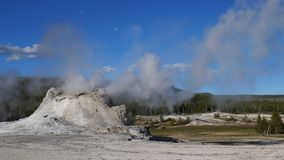 Castle Geyser in Yellowstone National park, USA. Castle Geyser in Yellowstone National park, Wyoming, USA stock video footage