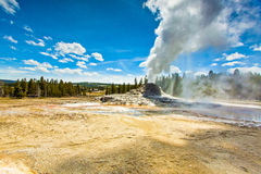 Castle Geyser of Yellowstone Park Erupting Stock Photo
