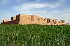 Castle on green field Royalty Free Stock Images