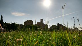 Castle in green grass. Nice green grass infront of the Colloseum in Rome Royalty Free Stock Image