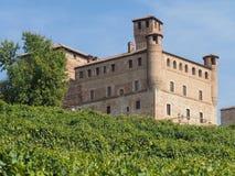 Castle Grinzane Cavour που περιβάλλεται από τους αμπελώνες Στοκ Εικόνες