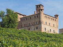 Castle of Grinzane Cavour surrounded by vineyards Stock Photo
