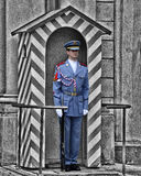 Castle Guard. An image representative of Prague Castle, Czech Republic showing one of the guards.  Conversion of the background to black and white to highlight Royalty Free Stock Photography