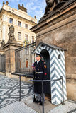 The Castle Guard in Prague. Stock Images