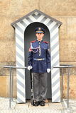 Castle Guard Stock Photography